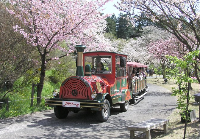 Parks, Zoos, Amusement Parks & Theme Parks in Shizuoka Prefecture (Regularly amended)