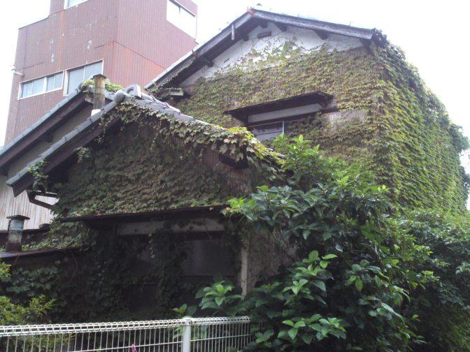 Abandoned Shizuoka: Ivy Building in Otowa Cho, Aoi Ku, Shizuoka City!