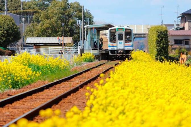 Shizuoka Prefecture Railway Stations: Tenhama Line (Kakegawa~Shinjyohara)