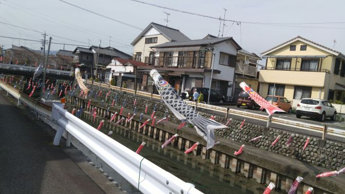 Carp Streamers in Kanaya, Shimada City!
