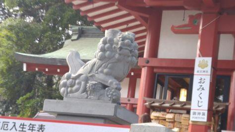 KINOMIYA-18