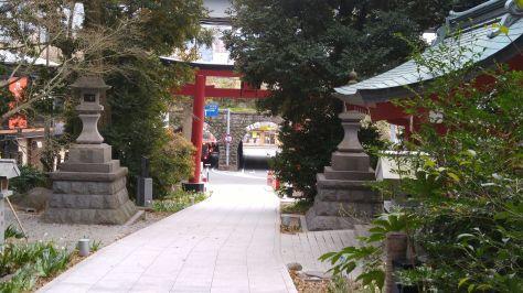 KINOMIYA-44