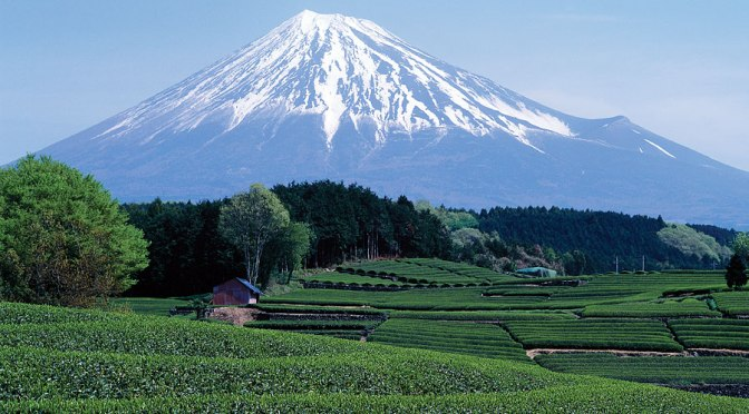 Shizuoka Prefecture Main Touristic Attractions: Railway, Bus & Ferry Access (constantly expanded)